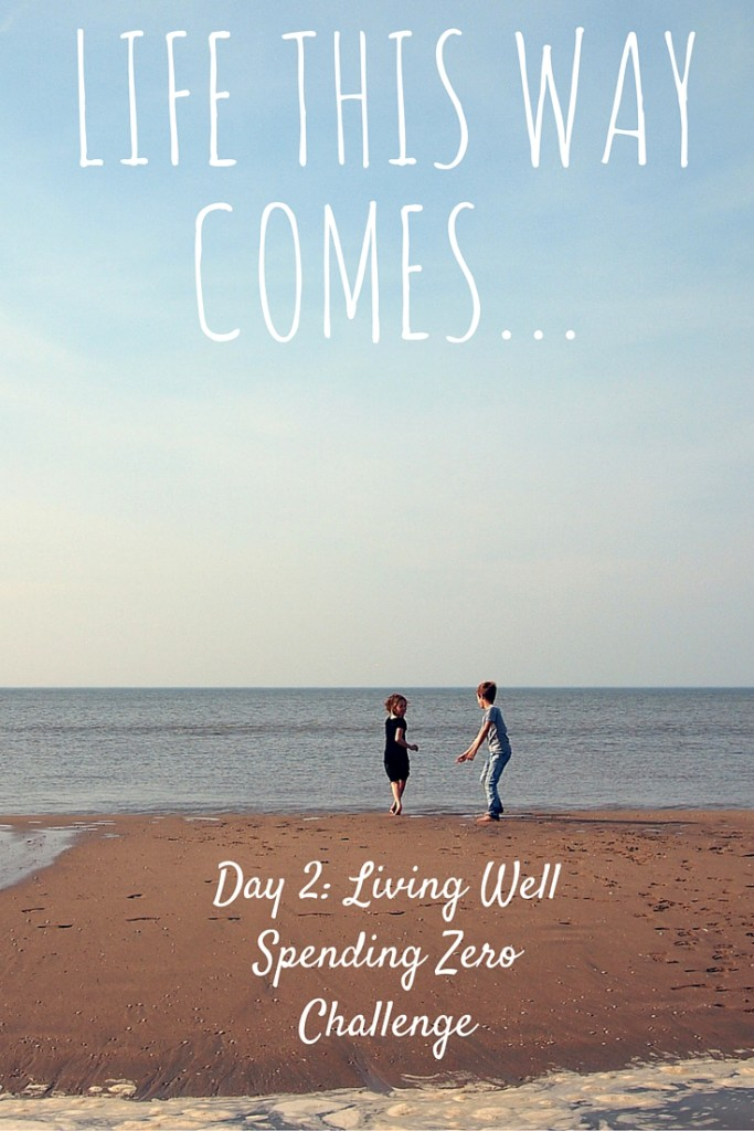 Day 2: Life This Way Comes – Living Well and Spending Zero